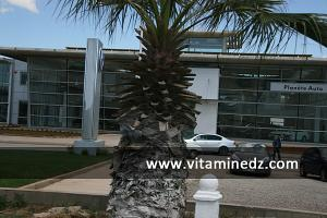 Nouveaux showrooms de concessionnaires à Essenia, route de l\'Aéroport