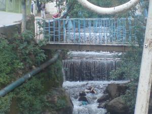 صورة من ضواحي وادي القردة 1