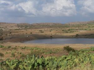 منظر من سد بوكابة ببلدية منصورة