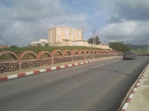 المدخل الجديد لمدينة زبوجة (ولاية شلف) 1
