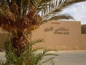 المستشفى المركزي لمدينة إليزي