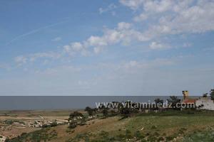 Ferme Coloniale aux environs de Lourmel (El Amria)