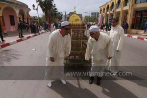 Association culturelle Al Manara de Meliana, Parade populaire de groupe folkloriques algériens aux cérémonies de clôture de Tlemcen capitale de la culture islamique 2011 (21/04/2012)