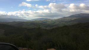 Les hautes plaines de Roknia