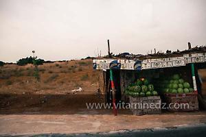 Marchands de pastèques à Sidi Khettab