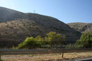 La commune de Oued Rhiou, route nationale 90, vers Ammi Moussa, Traversant Djbel Gargar