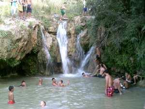 صور - الهوبجة - واد الشوك بلدية الزعرورية