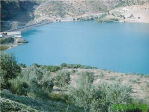 Tissemsilt - La zone humide du barrage de Bougara, havre de paix pour les familles