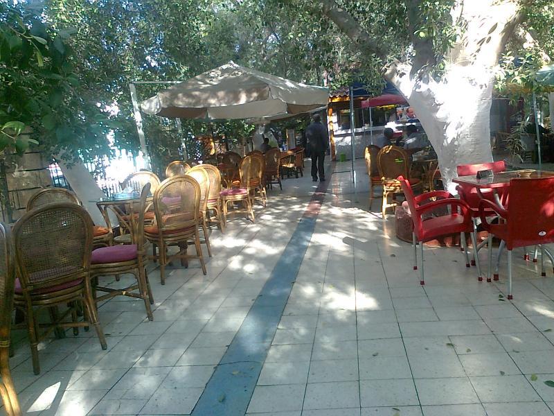 Biskra algerie communes photos for Jardin landon biskra
