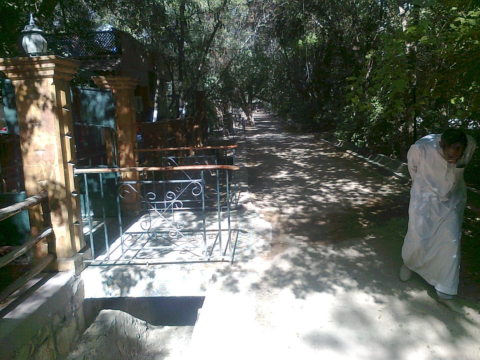 Jardin de biskra for Jardin landon biskra