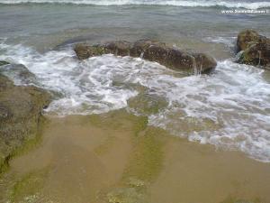 La plage d'Eden