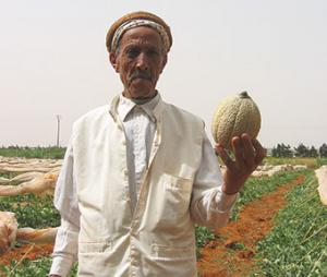 Mostaganem - Produits agricoles: La valorisation du terroir en question