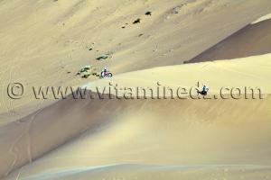 la Fédération algérienne des sports mécaniques organise, du 25 au 29 décembre, un rallye autos et motos Alger – Tlemcen – Béchar.