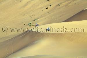 Course Moto-cross à Taghit