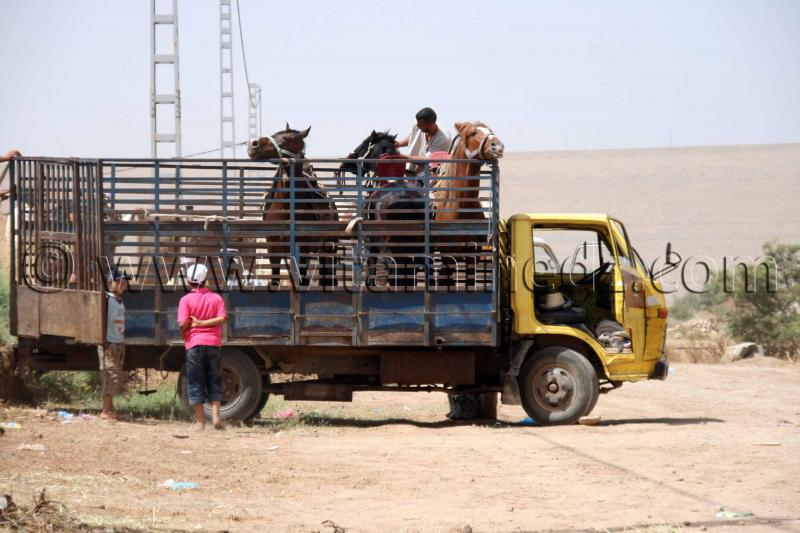 Waada de hammam boughrara tlemcen algerie