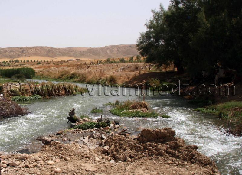 Oued Tafna passant par hammam boughrara tlemcen algerie
