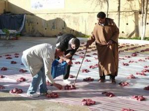 Mawlid Ennabaoui: «Ennafka», une tradition spécifique à la région de Mila