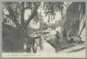 Biskra.- L'Oasis de Bab-Darb