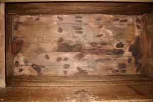 Coffre de cèdre bois Abdalwadides flanqué de l\'emblème de la dynastie mérinide réalisées par des artistes d\'origine andalouse des écoles prestigieuses de la capitale des Zianides le Madrasah du grand palais appelé Tachfiniya joyau de l\'architecture islam