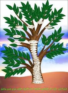 شجرة نسب أولياء الله الصالحين الشلايلية