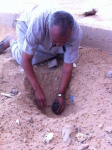 مدير ثانوية برج باجي مختار يارك في حملة التشجير
