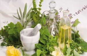 Blida - Reportage, Médecine par les plantes: La phytothérapie s'incruste dans les moeurs