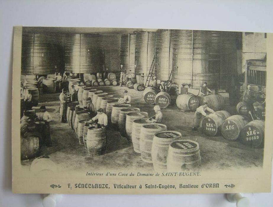 Alg rie oran saint eug ne f s n clauze viticulteur for Interieur algerie