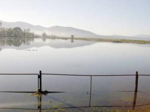 Journ�e mondiale de la biodiversit� au lac Tonga � El Tarf:  Une c�l�bration� et puis s�en vont!