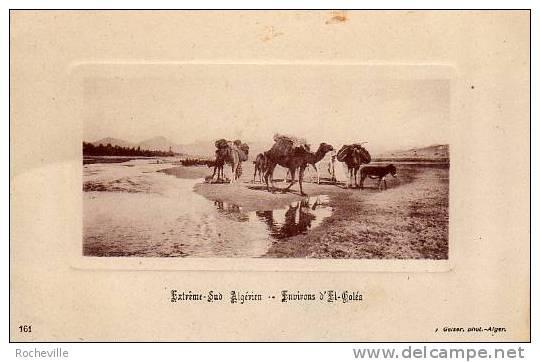 Extr�me -Sud Alg�rien- Environs d�El-Gol�a-Chameaux- 1923