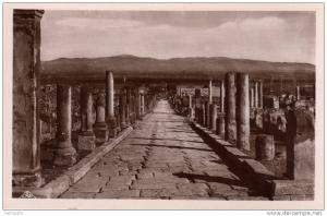 ALGERIE TIMGAD - LOT de 7 CARTES Ruines romaines