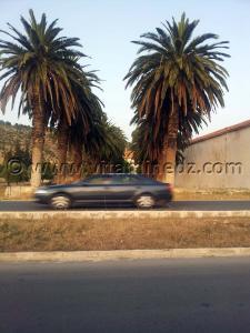 Ferme coloniale, Route Zahana Sidi Bel Abbes