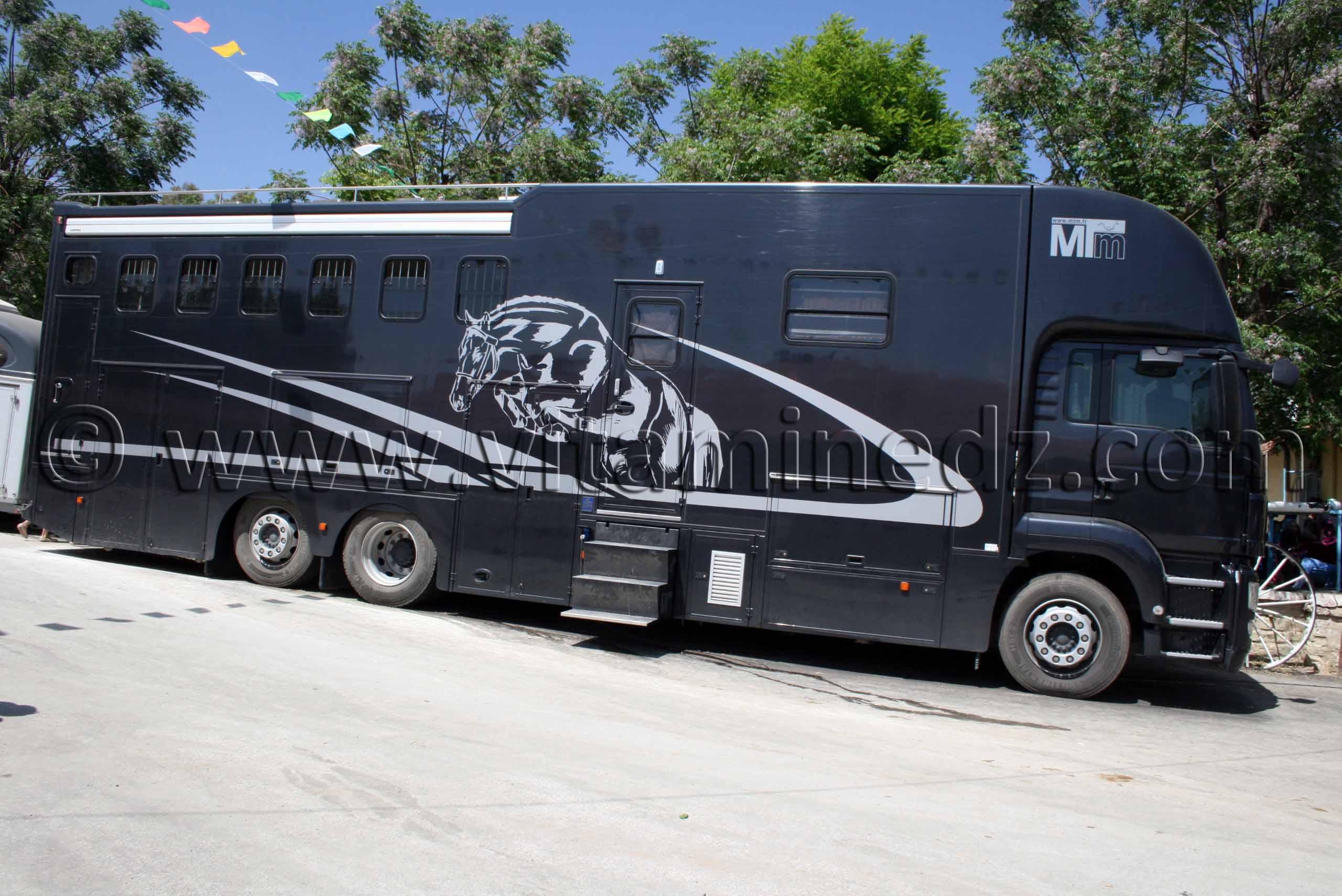 camion pour le transport de chevaux