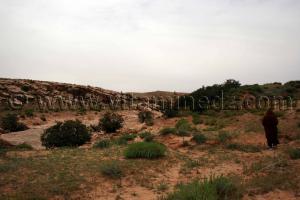 Station rupestres de Boualem, wilaya d'El Bayadh