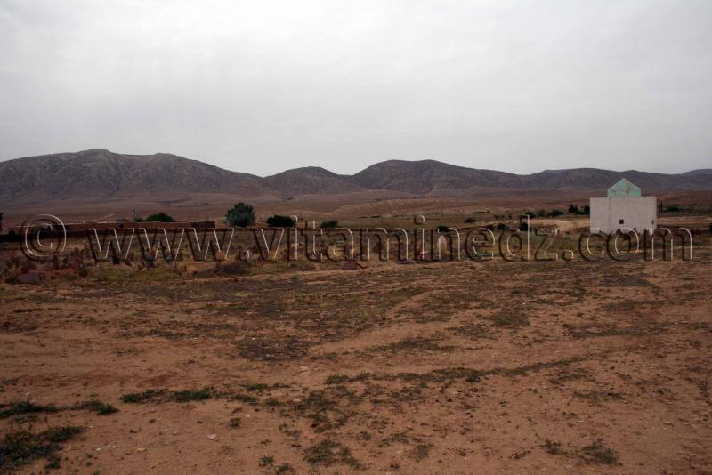 Cimeti�re pr�s de Boualem, wilaya d'El Bayadh