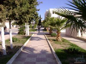 جامعة محمد بوضياف المسيلة