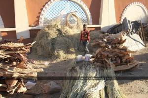 Travail des enfants à Tamanrasset