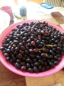 Tlemcen plats traditionnels - Olives noires à secher