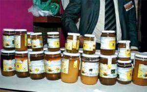 Blida - Une dizaine de jeunes apiculteurs participent à une foire du miel
