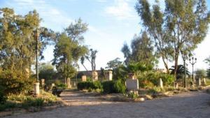 Guelma - Le jardin archéologique de Calama rouvert au public