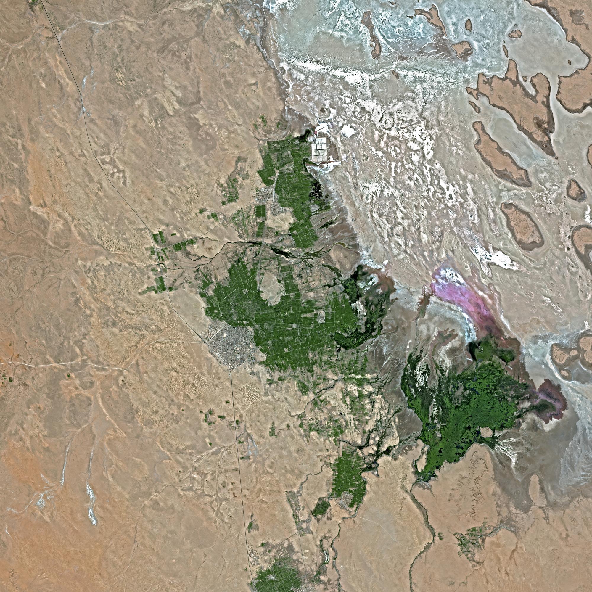 Image satellite SPOT 5 - Chott Melrhir, Alg�rie