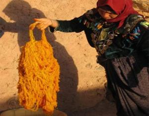 Tlemcen - Tapisserie: L'utilisation de produits naturels pour la teinture de la laine recommandée