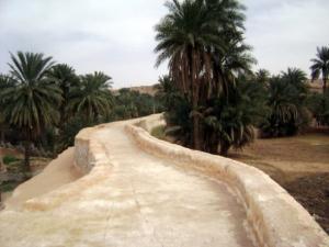 Lancement prochain des travaux de réhabilitation de la digue Ahbas d'El-Atteuf (Ghardaia)
