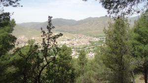 صور من بلدية المعاضيد