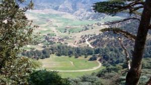 Tissemssilt - 10e semi-marathon de La boucle verte au parc des cèdres de Theniet El Had