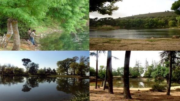 Constantine - Le quatri�me lac de Mestaoua � Djebel Ouahch