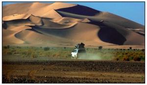 ADRAR : Nécessaire respect de l'environnement dans la fixation des dunes de sable