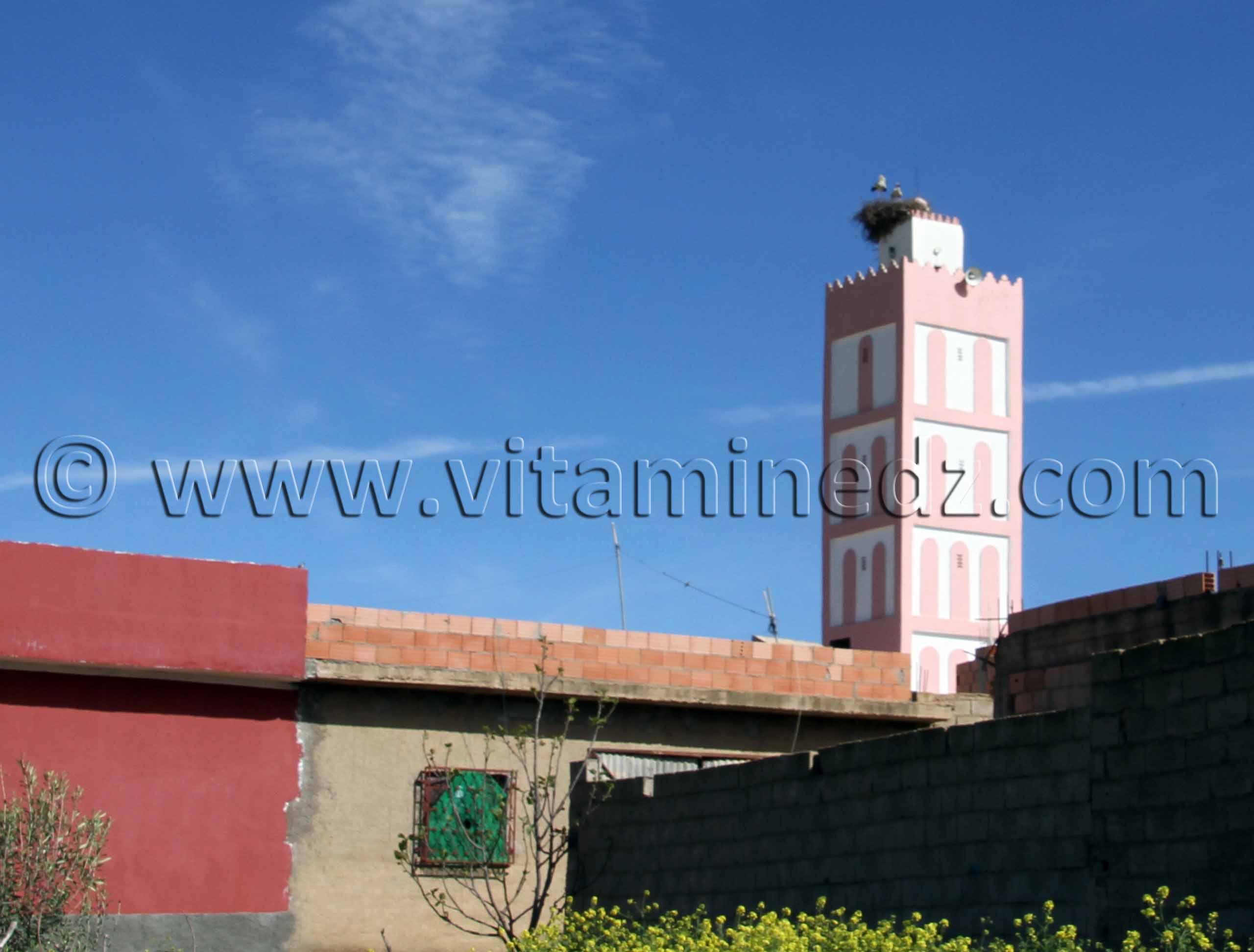 Mosqu�e de Sidi Soufi - commune de Ouled Mimoun (Lamorici�re - Altava)