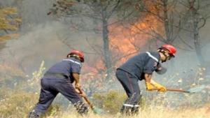 تسجيل اكثر من 20 حريقا منذ شهر جوان بسطيف