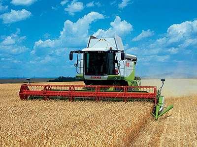 تعرف ولاية بويرة جفافا و انخفاضا في زراعة الحبوب