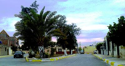 حي 150 مسكن بسكرة: حملة